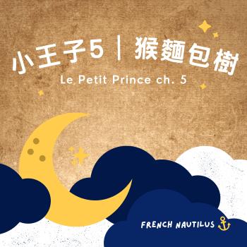 小王子 Le Petit Prince 第五章節