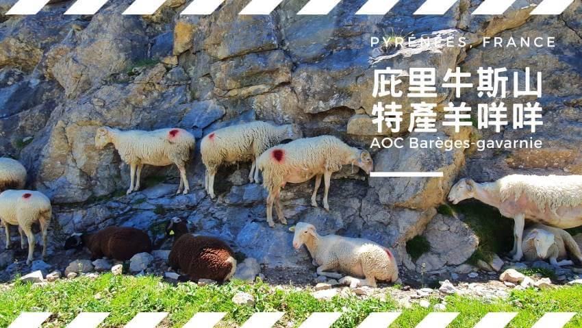 【法國食材】庇里牛斯山的特產羊咩咩
